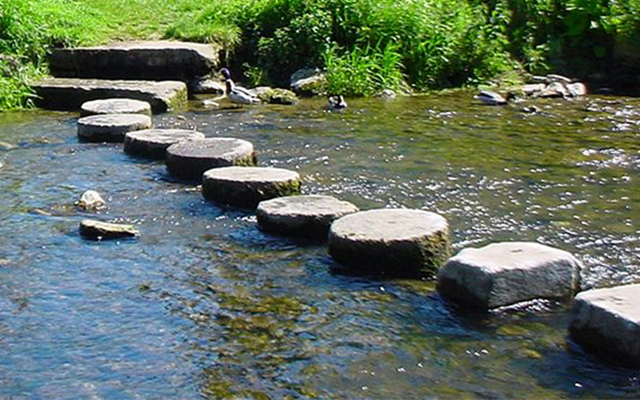 photo for Stepping Stones