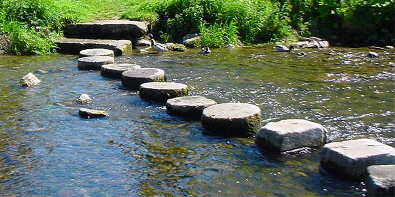 Image for Stepping Stones