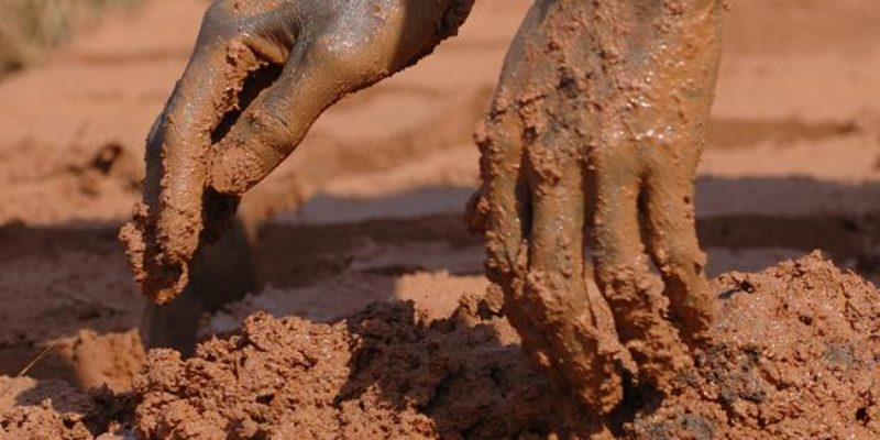 Image for Spit and Mud