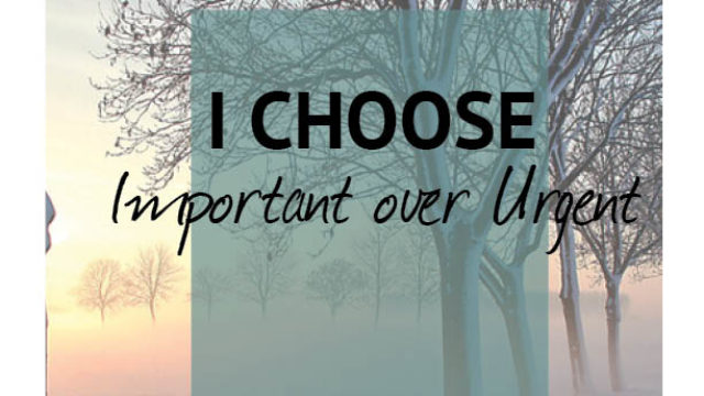 Image for I Choose…Important over Urgent