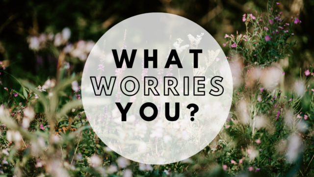Image for What Worries You?
