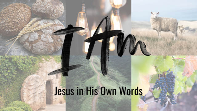 Image for I AM: The Way, The Truth, and the Life