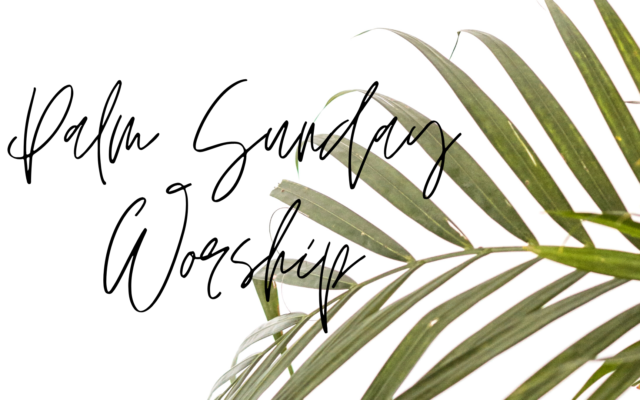 photo for Palm Sunday Sermon Transcript