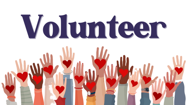 Volunteer Web Logo